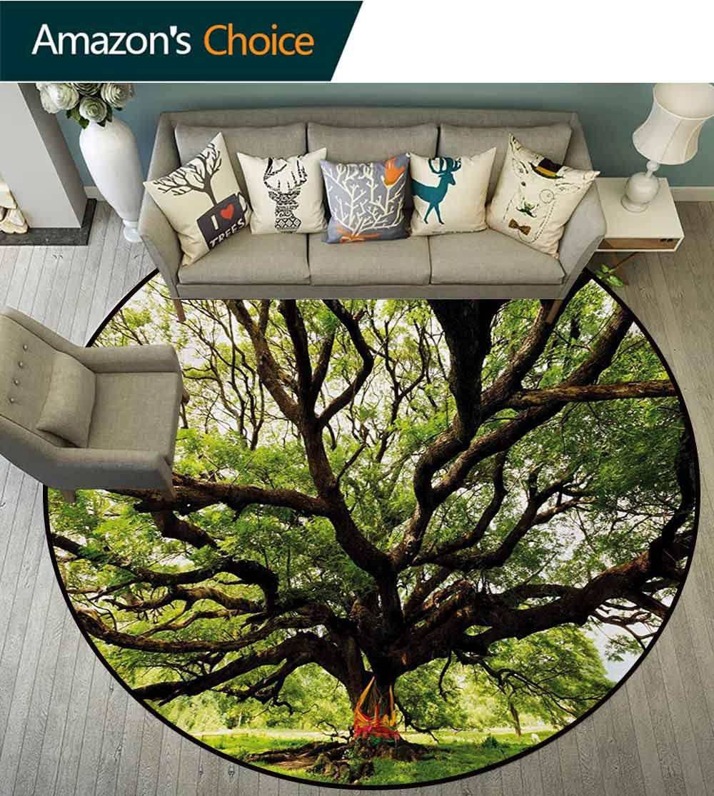 RUGSMAT Nature Round Rugs for Bedroom,The Largest Monkey Pod Tree in Thailand Eastern Green Big Branches Growth Eco Photo Circle Rugs for Living Room,Round-71 Inch Green Brown