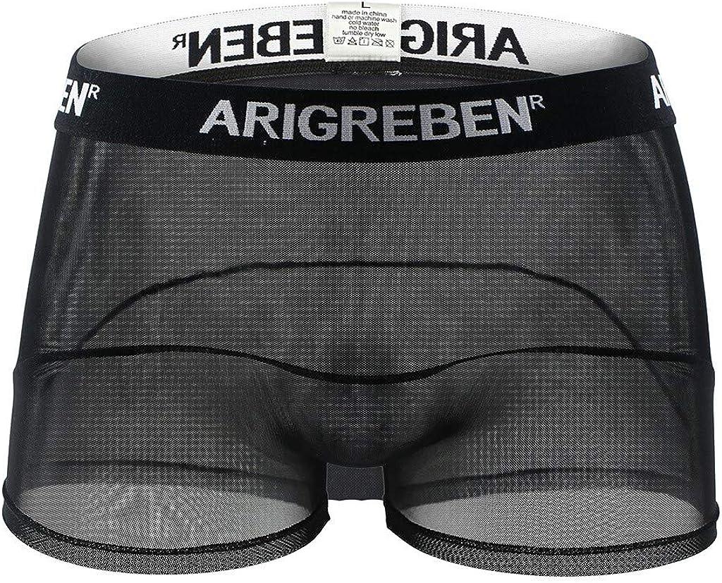 Mens Transparent Fishnet Mesh Boxer Briefs Trunks Underwear Underpants D560