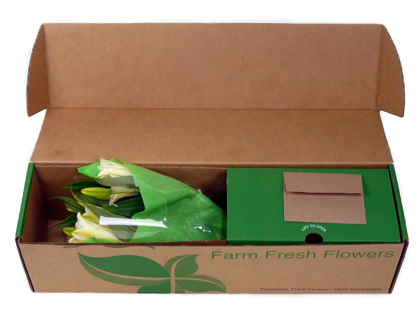 Amazon benchmark bouquets 8 stem stargazer lily bunch with amazon benchmark bouquets 8 stem stargazer lily bunch with vase fresh cut format lily flowers grocery gourmet food izmirmasajfo