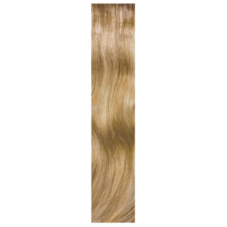 c23cd37e BALMAIN HALF WIG MEMORY HAIR EXTENSIONS 45cm - AMSTERDAM OMBRÉ:  Amazon.co.uk: Beauty