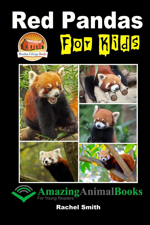 Red Pandas Kids Rachel Smith product image