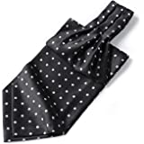 HISDERN Stripe Check Cravat Ascot Tie for Men Wedding Party Cravat Scarf