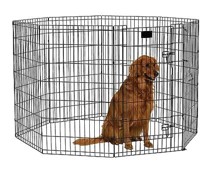 19 Elegant Midwest Large Dog Crate