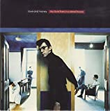 My love lives in a dead house (1991) / Vinyl single [Vinyl-Single 7'']