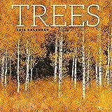 2018 Trees Wall Calendar