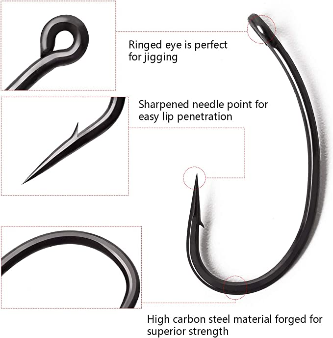 Amazon Com Fairiland 100pcs Fishing Hooks Curve Shank Single Barbed 2 4 6 8 10 Circle Carp Fishhooks For Saltwater Freshwater Pack With Hook Box Sports Outdoors