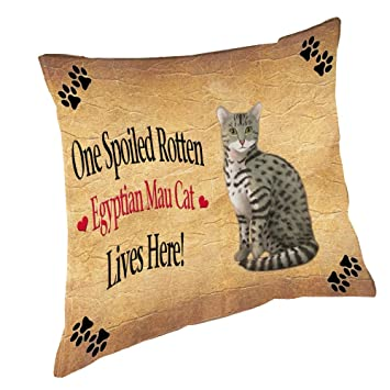 Amazon.com: Almohada para gato egipcio Mau Spoiled Rotten ...