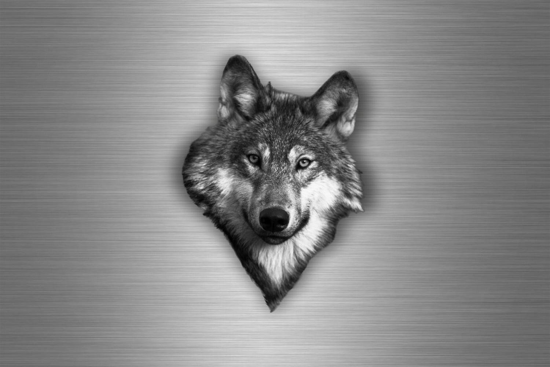Autocollant sticker voiture moto tuning loup wolf biker tê te de macbook r2 akacha SKU007814