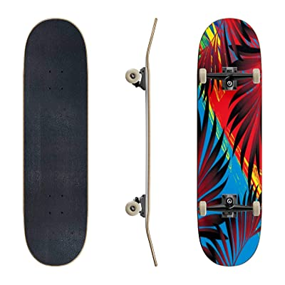EFTOWEL Skateboards Pattern of Tropical Palm Trees Rainforest Stock Illustrations Classic Concave Skateboard Cool Stuff Teen Gifts Longboard Extreme Sports for Beginners and Professionals : Sports & Outdoors