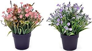 Set of 2 Louis Garden Artificial Mini Potted Plants Home Decoration … (Daisy) (LGCJPZ)