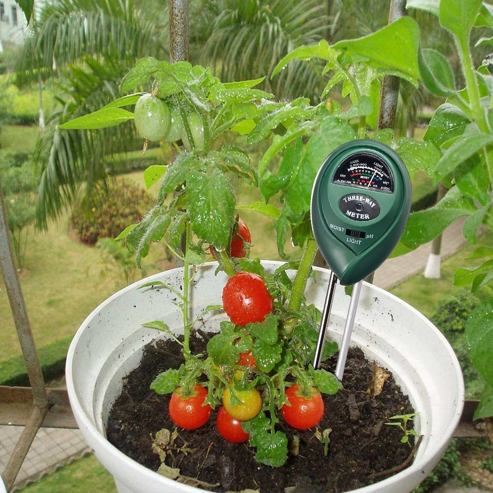 What is the best soil for tomatoes - Best Soil Ph Tester 006
