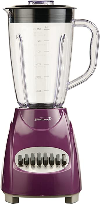 The Best Oster Blender Purple