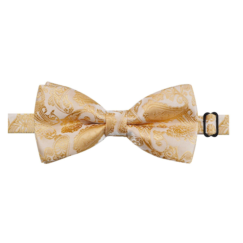 Alizeal Paisley Lot de N/œud Papillon Pr/é-nou/é /& Mouchoir de Poche /& Boutons de Manchette pour Homme Champagne