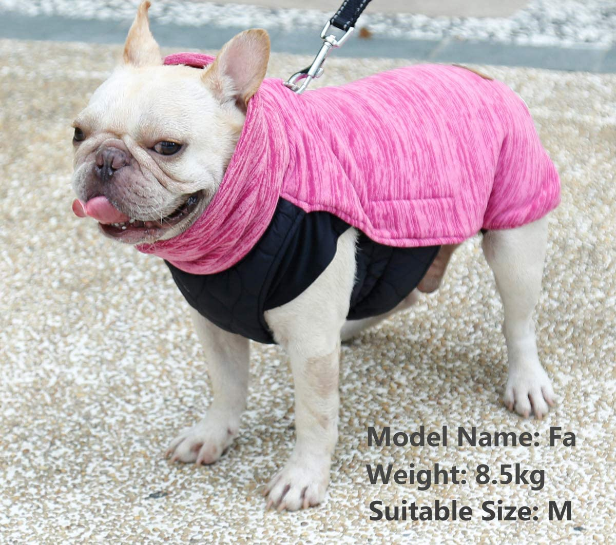 Available for Collar Harness D Ring Loft Jacket for Small Medium Large Dogs Hair Free Pet Winter Vest Windproof Snowsuit Cold Weather Pets Apparel S, Pink Rantow Reversible Dog Coat