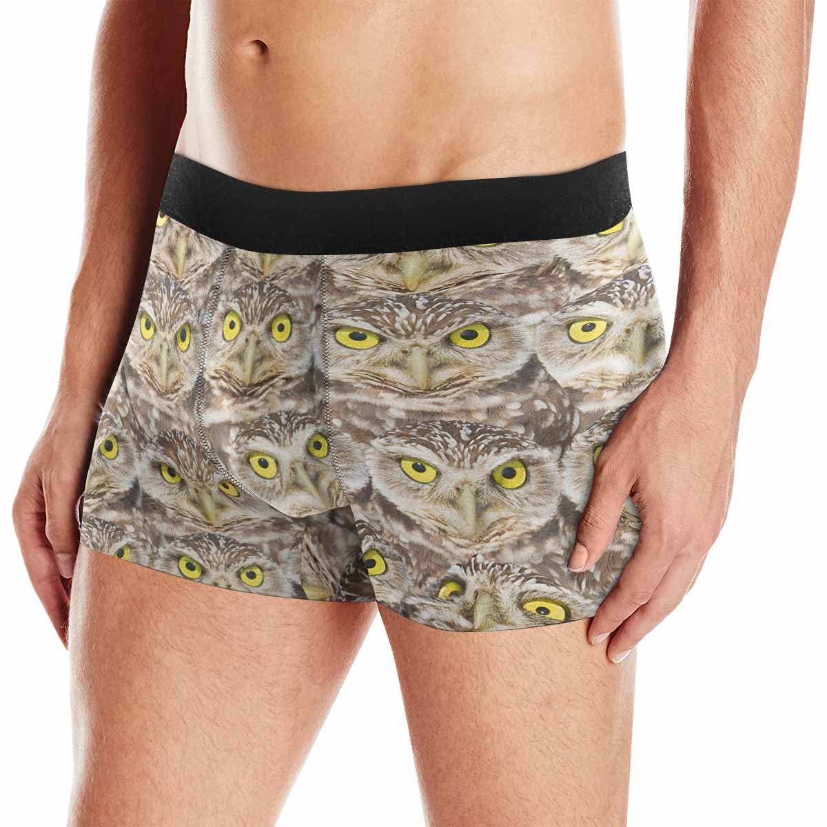 INTERESTPRINT Boxer Briefs Mens Underwear Burrowing Owls Group Portrait XS-3XL