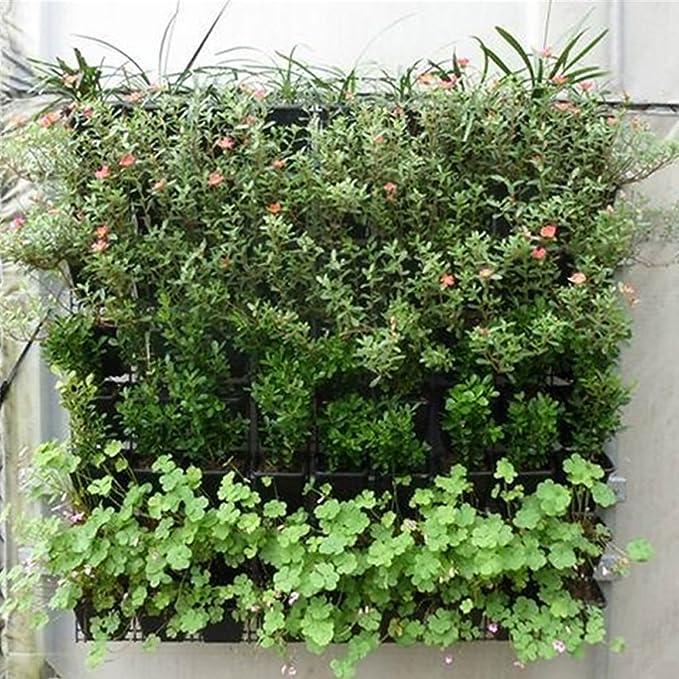 Domybestshop Bolsa Vertical Plantas 64 Bolsillo Vertical para jardín Pared Interior y Exterior, Color Negro: Amazon.es: Jardín