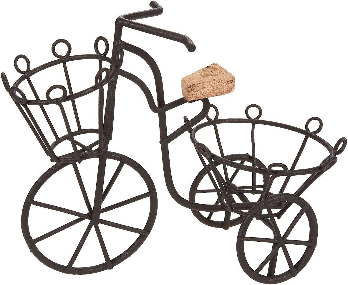 Soporte para plantas, de hierro, con diseño de bicicleta, para decoración de jardín o interior, color negro, 17 x 14 x 6,35 cm