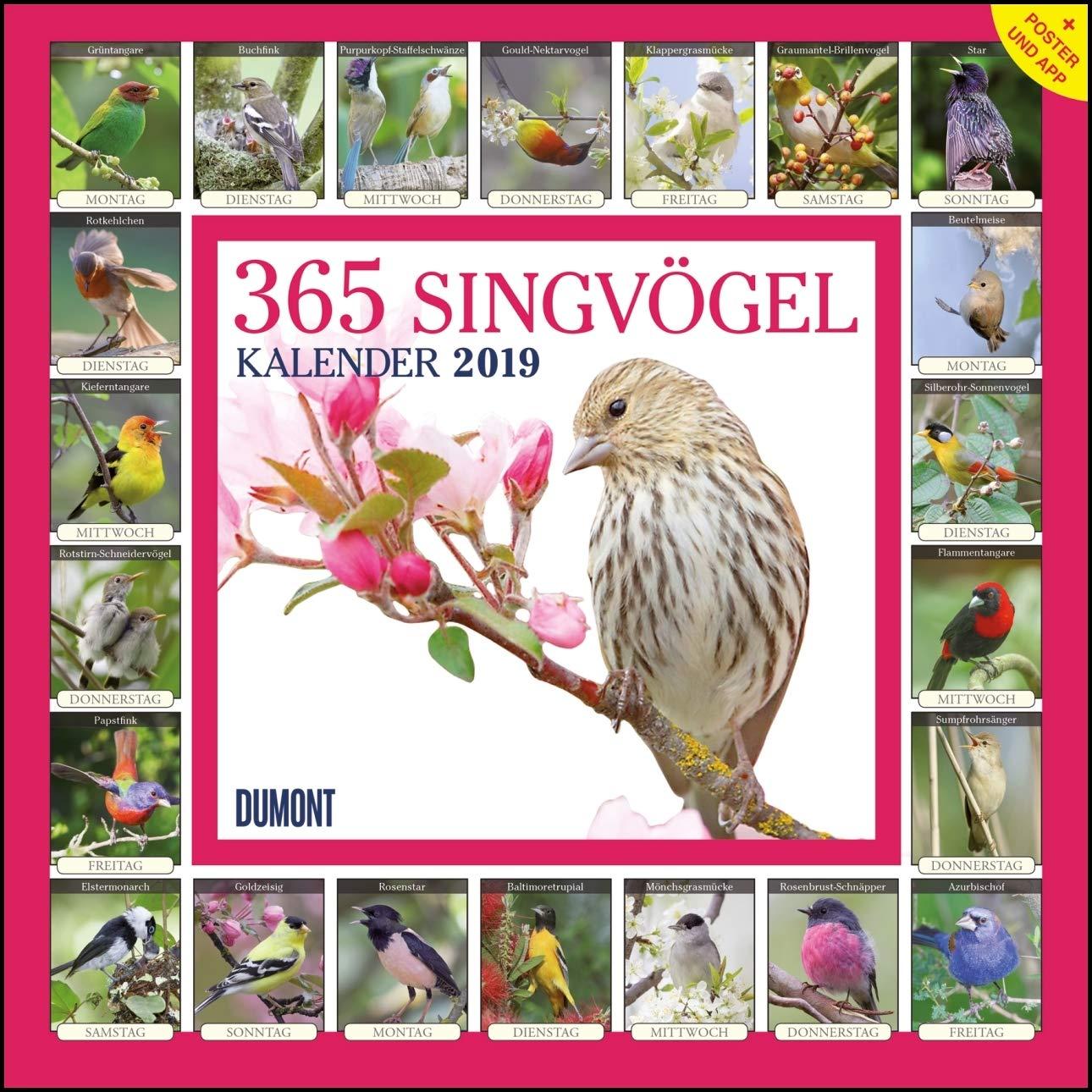 365-singvgel-2019-broschrenkalender-wandkalender-mit-poster-und-sound-app-format-30-x-30-cm