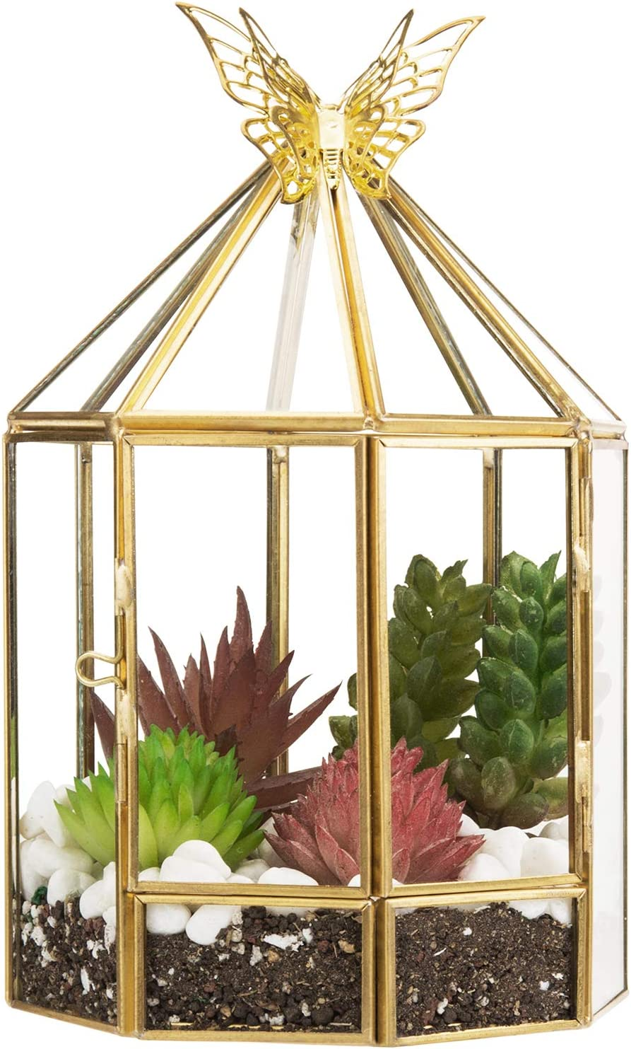 MyGift 7.5-Inch Glass Plant Terrarium Hexagon Birdcage Design with Brass-Tone Metal Frame, Side Door and Butterfly Accent