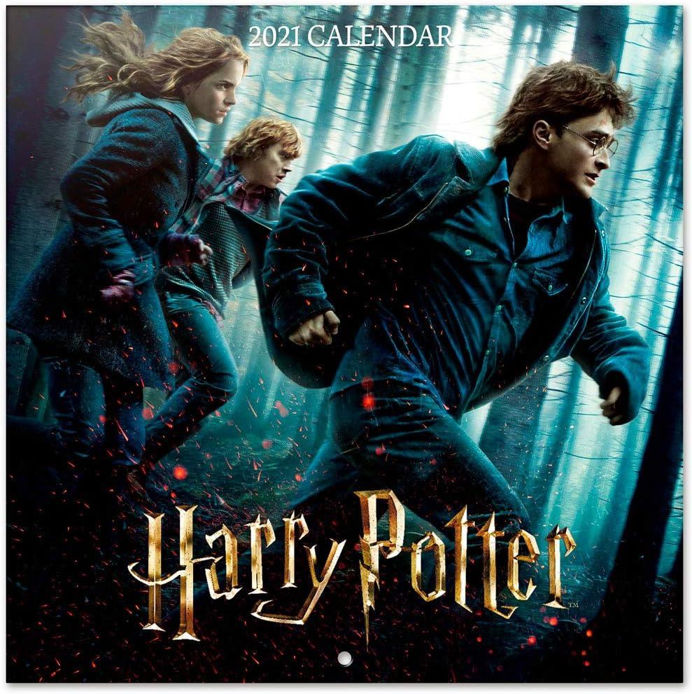 ERIK - Calendario de pared 2021 Harry Potter, 30x30 cm