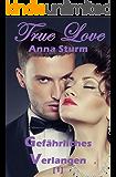 True Love [1]: Gefährliches Verlangen (True Love - Reihe)