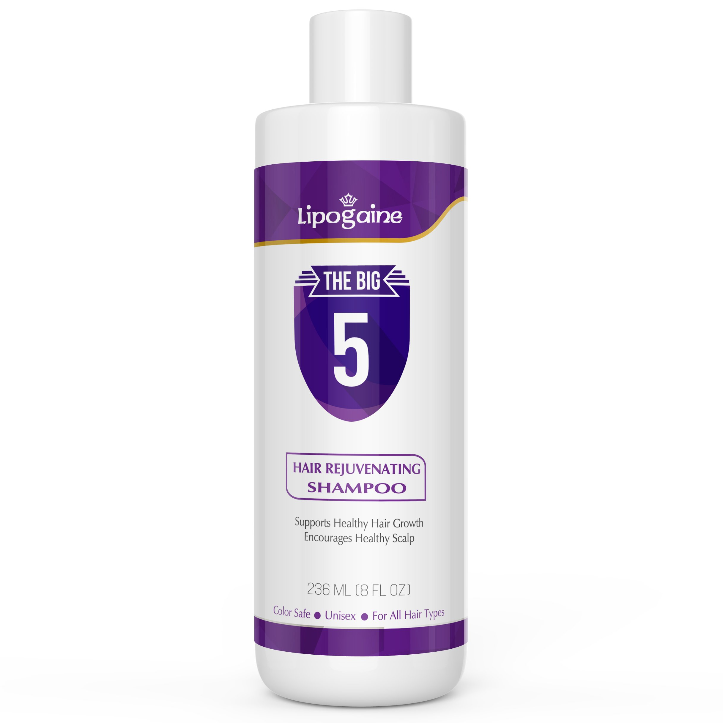 Lipogaine Hair Stimulating Shampoo for Hair Thinning & Breakage, for All Hair Types, Men and Women, Infused With Biotin, Caffeine, Argan Oil, Castor oil and Saw Palmetto (Purple) by Lipogaine