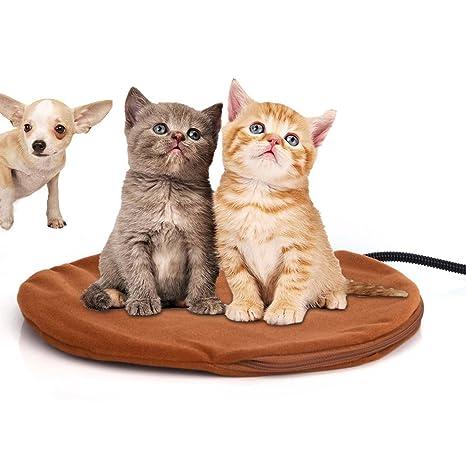 Berocia cama perro pequeño gato mascota colchoneta manta Cojín de calefacción Cama eléctrica animal antiarañazos manta