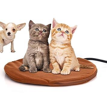 Berocia cama perro pequeño gato mascota colchoneta manta Cojín de calefacción Cama eléctrica animal antiarañazos manta electrica Protección de ...