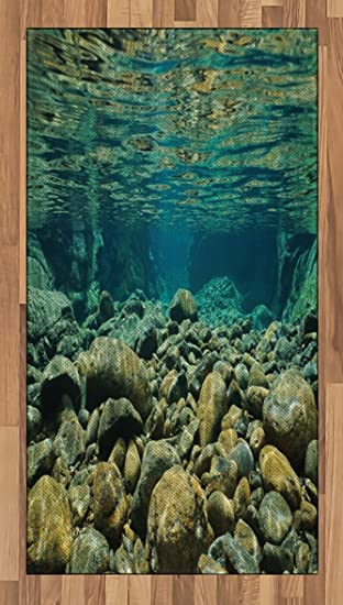 River Area Rug By Lunarable, Underwater View With Rocks And Pebbles Torrent  Clear Fresh Water