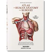 Bourgery. Atlas De Anatomía Humana Y Cirugía (Bibliotheca