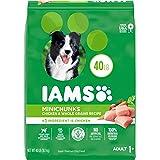 IAMS Minichunks Dry Dog Food, Chicken
