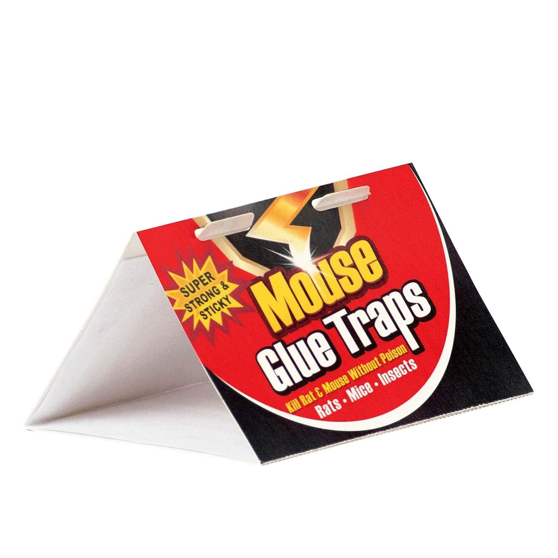Amazon.com: SteadMax Jumbo – Tabla de pegamento para ratón ...