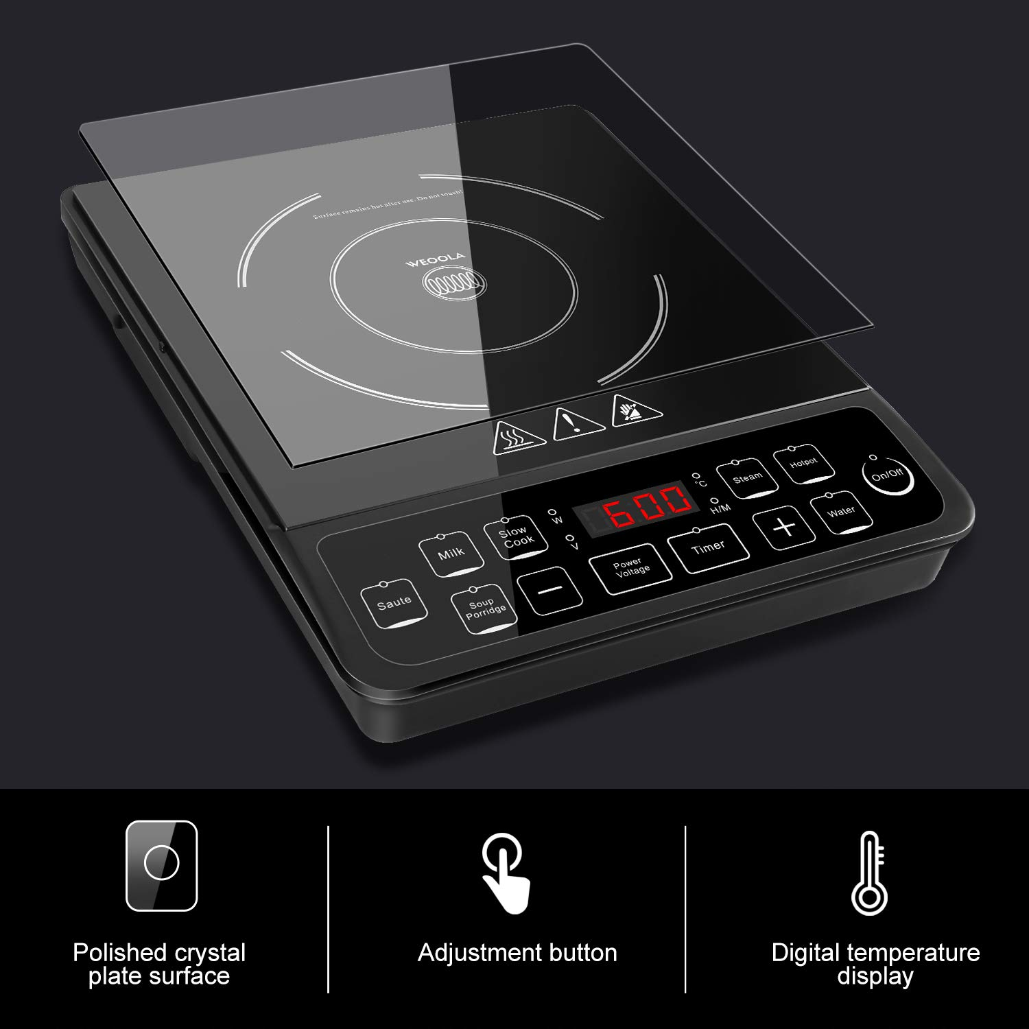 Portable Induction Cooktop 10\