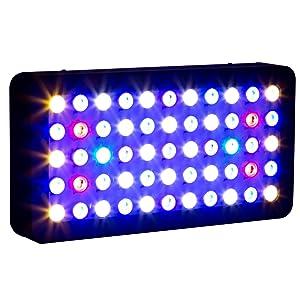 best-led-light-for-reef-tank