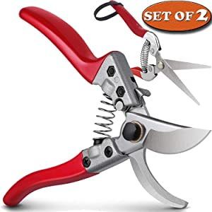 "HyleJhJy 8"" Bypass Pruning Shears with Stainless SK5 Steel Blades + Straight Tip Pruning Shears Herb Pruning Shears Florist Scissors- Hand Pruner Scissors for Garden Harvesting Fruits Vegetables,Red"