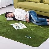 (OSJ)ラグ カーペット ラグマット 絨毯 マイクロファイバー ラグ 滑り止め 洗える ウォッシャブル ホットカーペット対応 フロアマット チェアマット モダンラグ 140X200cm 6色選べる (グリーン)