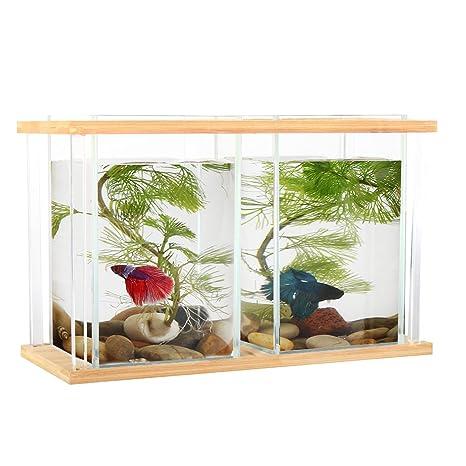 Pescado cuencos bambú, segarty Unique Cool diseño pequeño jarrón de cristal cuadrada Creative Kit de acuario ...