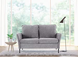 Loveseat, Small Couch and Sofa, Small Loveseat for Small Spaces, Upholstered Loveseat for Living Room,Modern Tufted Fabric Loveseat (Grey)