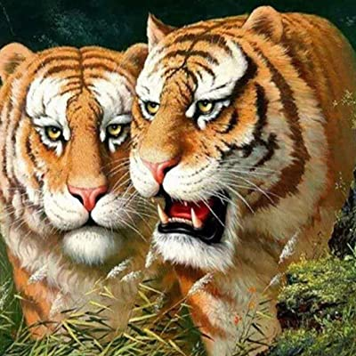 NIHAI DIY 5D Diamond Painting Kit, Cute Tiger Full Drill Diamond Painting Rhinestone Embroidery Cross Stitch Arts Craft Canvas for Living Room Home Wall Decor (A): Baby [5Bkhe2001233]