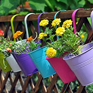 "LOVOUS 6.1"" x 4.5"" x 5.7"" Large 3 PCS Iron Hanging Flower Pots Balcony Garden Plant Planter, Wall Hanging Metal Bucket Flower Holders"