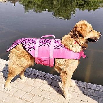 Amazon.com: ZTL perro chaleco salvavidas chaleco de ...