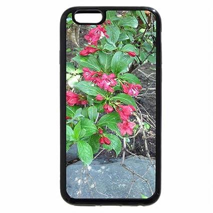 coque iphone 6 botanique