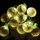 Pineapple Fairy String Lights,ER CHEN(TM) 7Ft 10 LED Pineapple Battery Power Led String Lights for Party,Wedding,Xmas,Decoration,Gardens,Patios,etc.