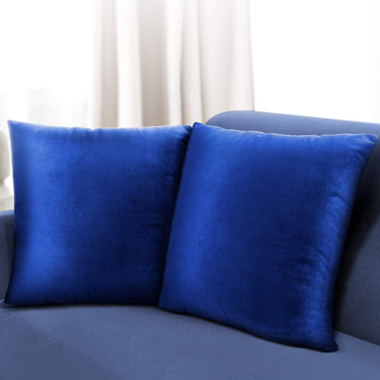 Leafbay Set of 2 Velvet Throw Pillow Covers 18