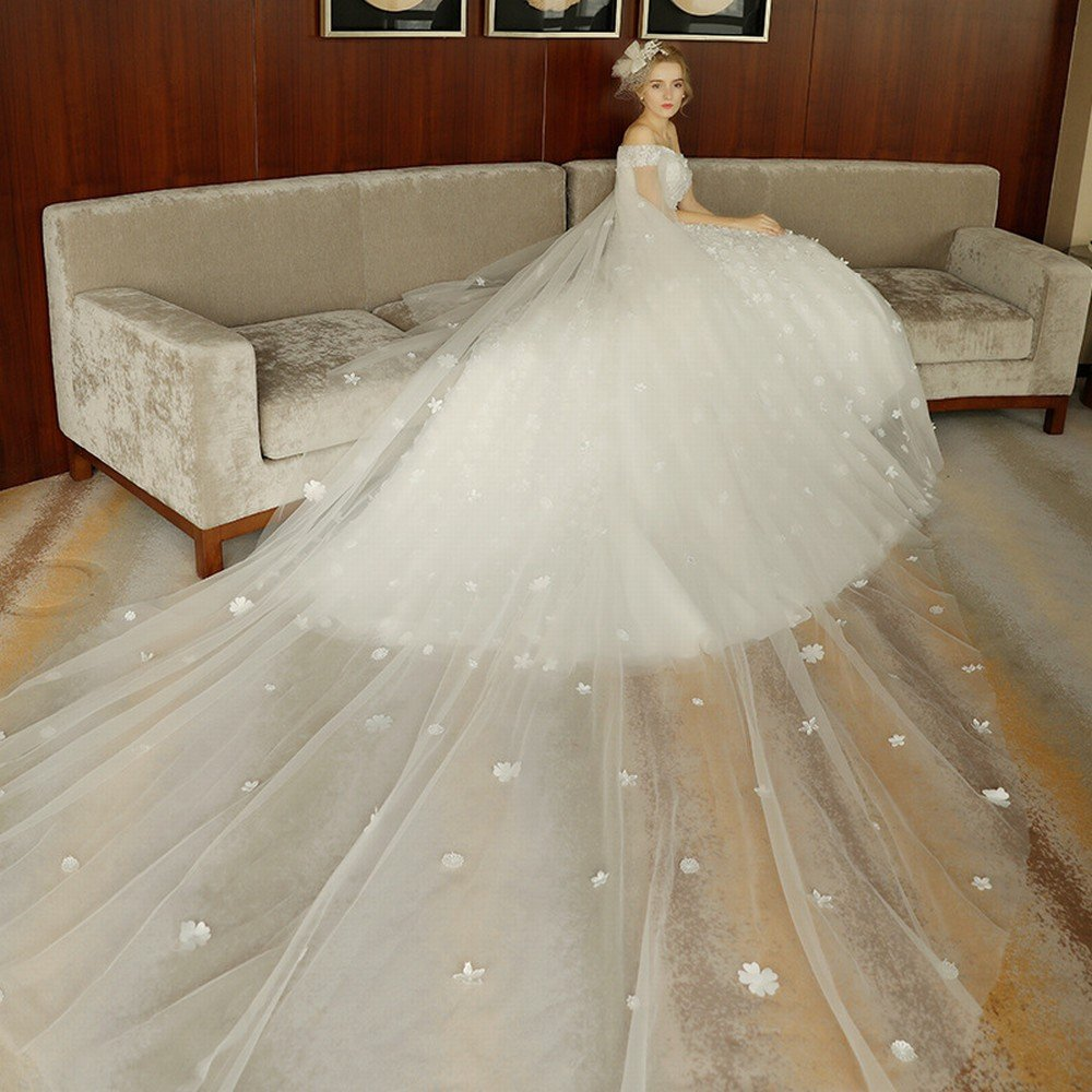 DIDIDD the BrideS Shoulder is Thin and Luxurious Long Tail Wedding Dress,White,M