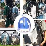 Beito Blue Transparent Pet Carrier Bag Green