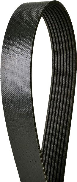 Continental Elite 4080810 Poly-V//Serpentine Belt