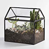 Newitty Geometric House-Shaped Glass Terrarium with Lid for Succulents Air Plants Moss, Black