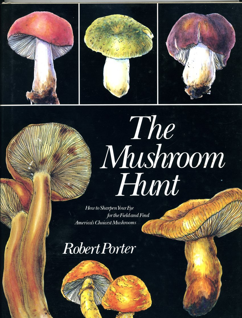 The Mushroom Hunt, Robert Porter