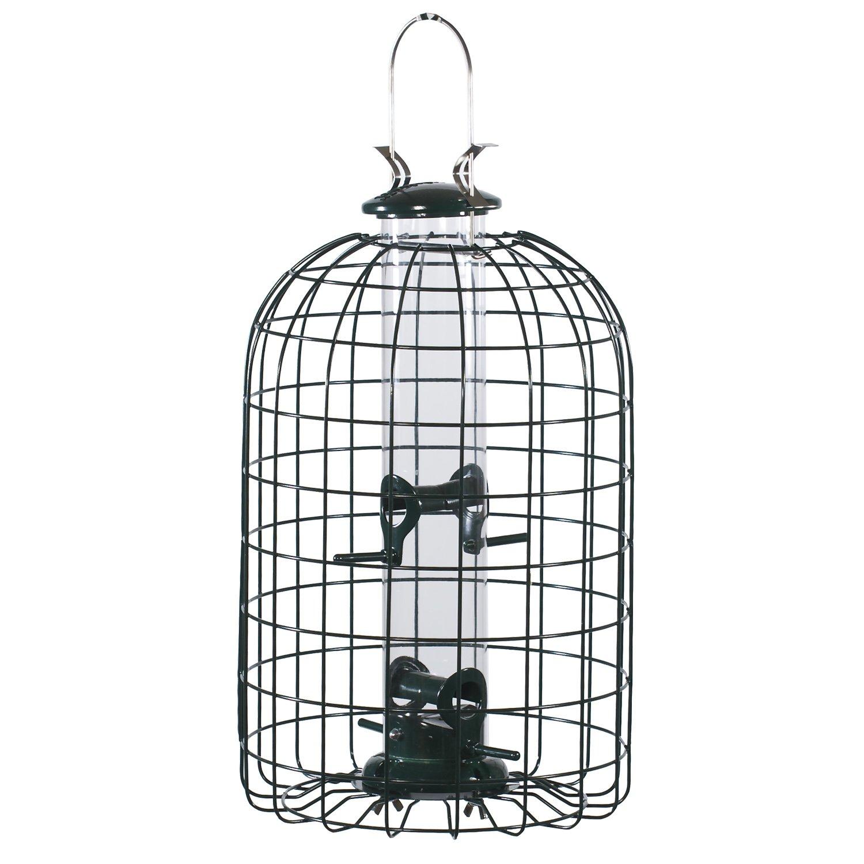 Amazon.com: Audubon Squirrel Proof Caged Tube Type Bird Feeder Model ...